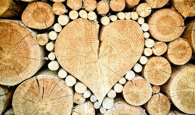 choisir un poêle à bois